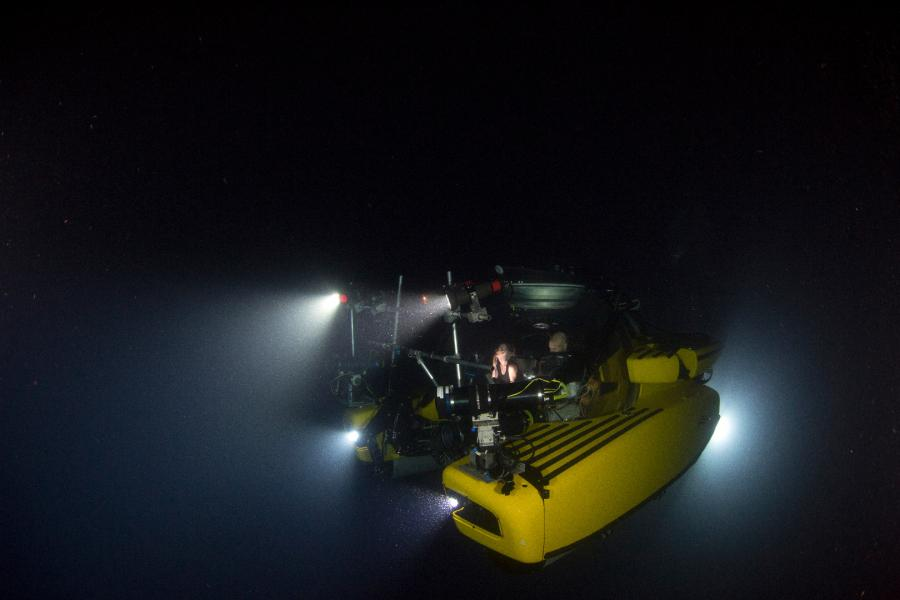Błękitna Planeta II Premiera: 16 listopada, godz. 19:55 w BBC Earth