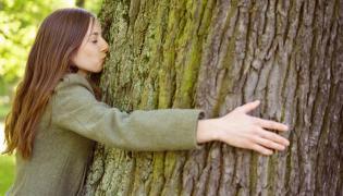 Kobieta całuje drzewo