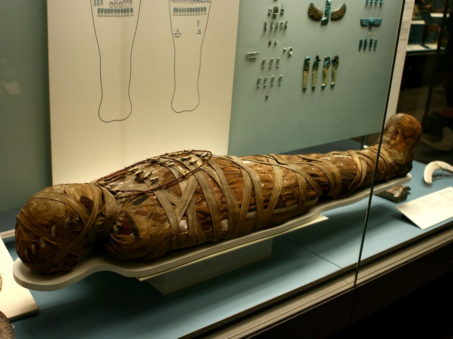 W starożytnej mumii odkryto pasożyta