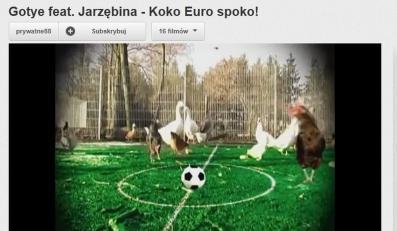 """Gotye śpiewa """"Ko ko Euro spoko"""""""