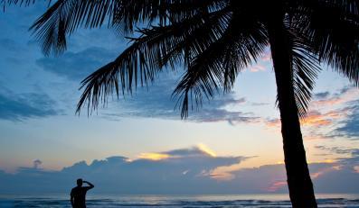 Tropikalna plaża - zdjęcie ilustracyjne