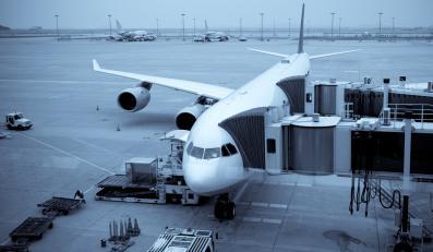 Samolot przy terminalu