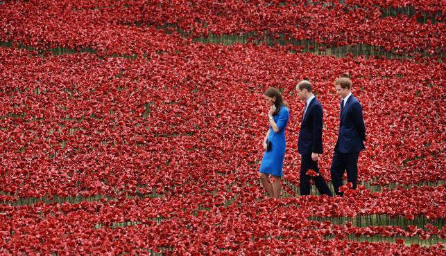 Księżna Catherine, książę William i książę Harry wśród maków okalających twierdzę Tower w Londynie