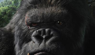 King Kong, Godzilla i inne kinowe monstra