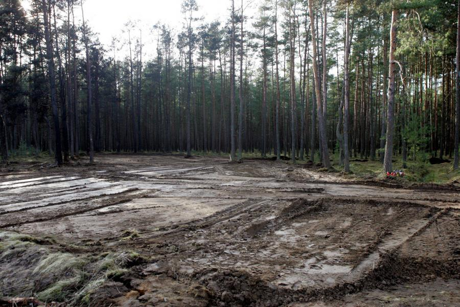 Miejsce katastrofy lotniczej pod Mirosławcem
