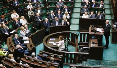 Wystąpienie Andrzeja Seremeta w Sejmie