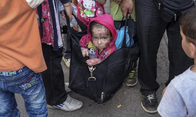 Pokiereszowane dziecko imigrantów w torbie podróżnej. Fotograf: Widok trudny do wytrzymania
