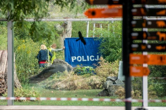 Tragedia we wrocławskim zoo