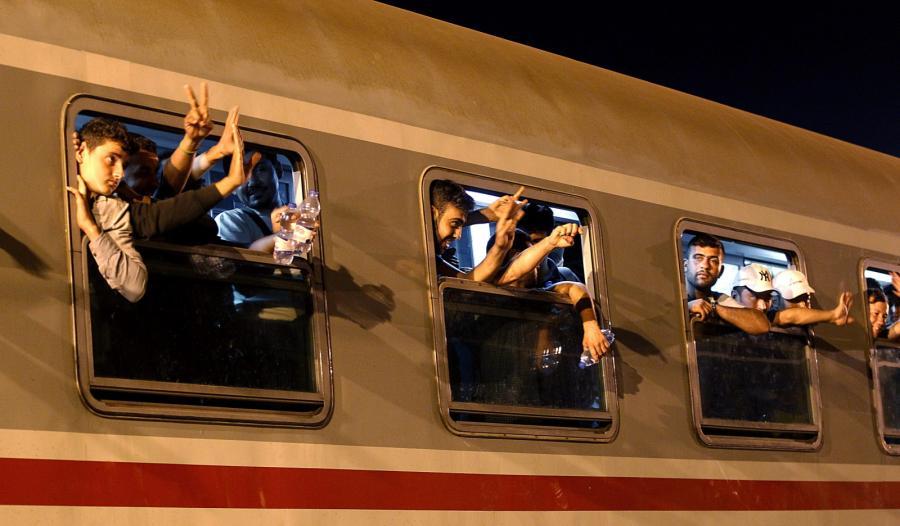 Imigranci na granicy chorwacko-serbskiej