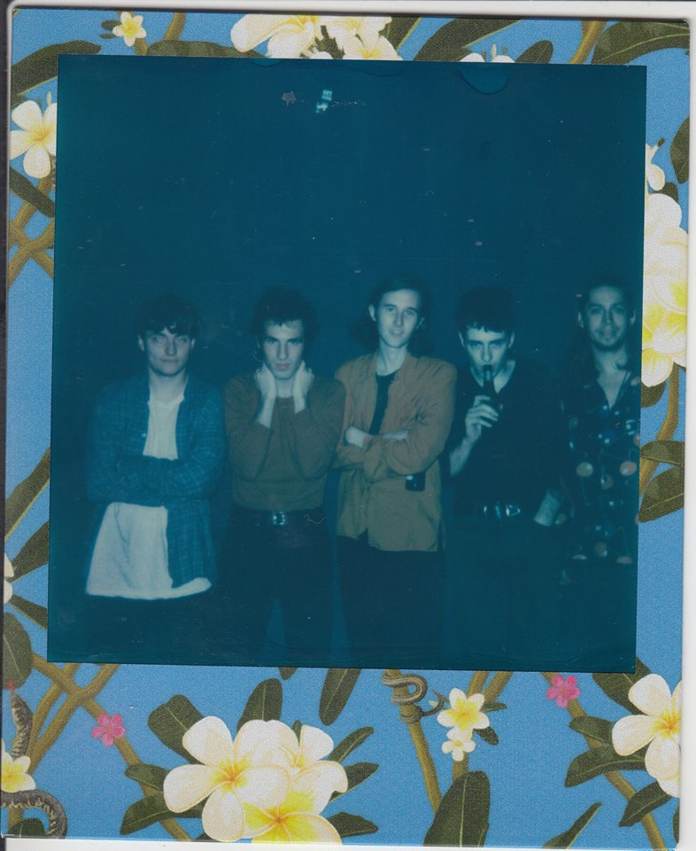 "3. Swim Deep: ""To My Brother"""